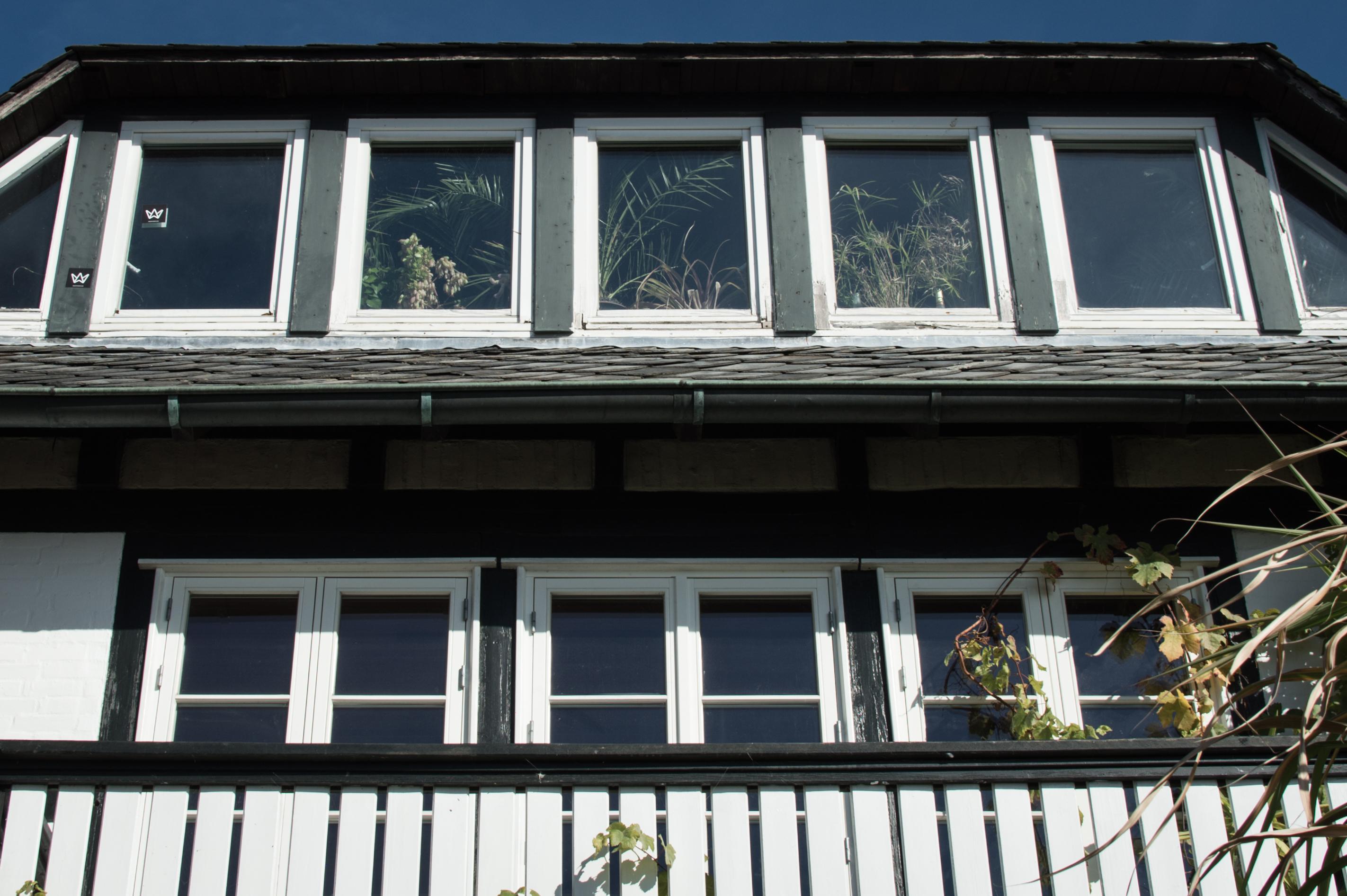 Haus mit Pflanzen